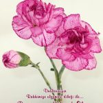 Çiçekli Bayram Mesajları